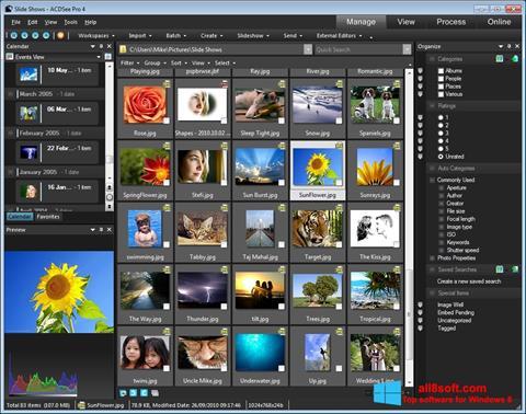 Screenshot ACDSee Windows 8
